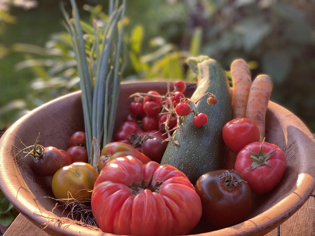 Gesunde Ernährung, gesunder Planet, Nachhaltigkeit, lecker, schmeckt, gesundes Essen schmeckt, Naturschutz, Tierwohl, Gesundheit, Blog, Ophelia Nick